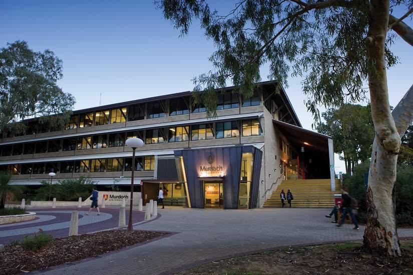 Стипендии для иностранных студентов от Murdoch University в 2018