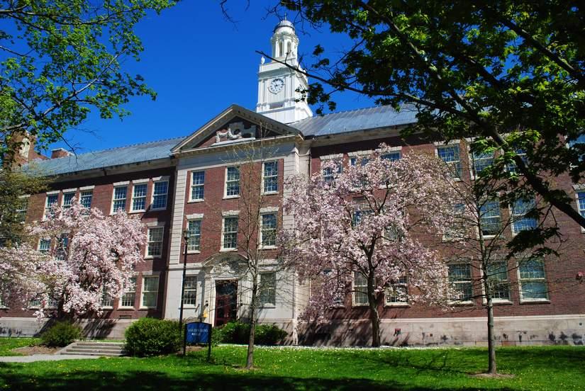 Стипендия для иностранных студентов от State University of New York в 2018