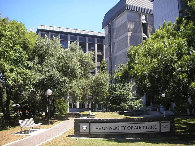 Стипендии для иностранных студентов от University of Auckland в 2019
